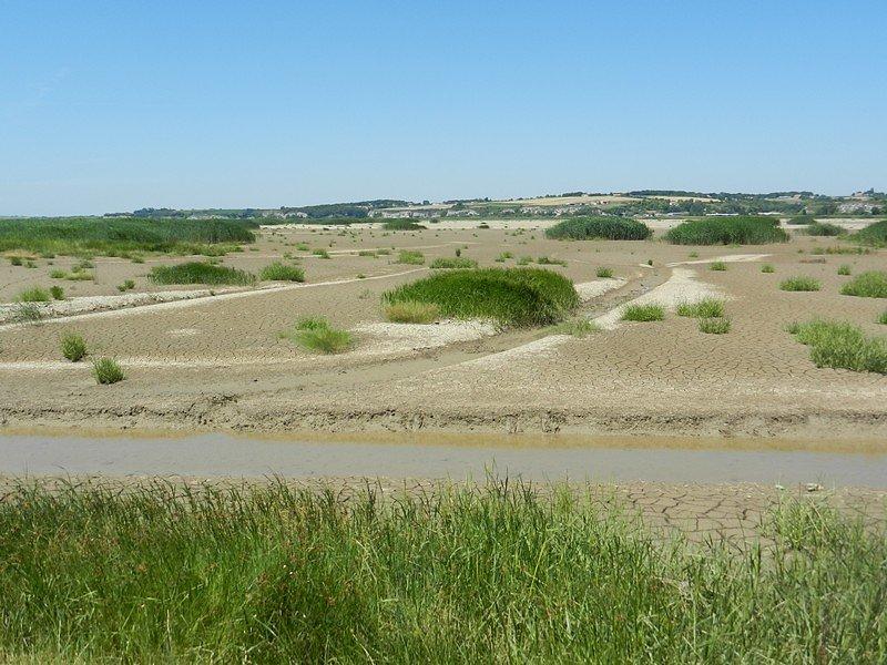 ancien polder