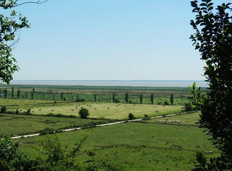 point de vue sur la Gironde du haut de la falaise