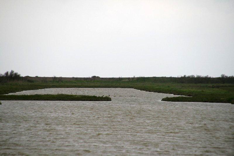 Vaste plan d'eau, idéal pour le repos des canards