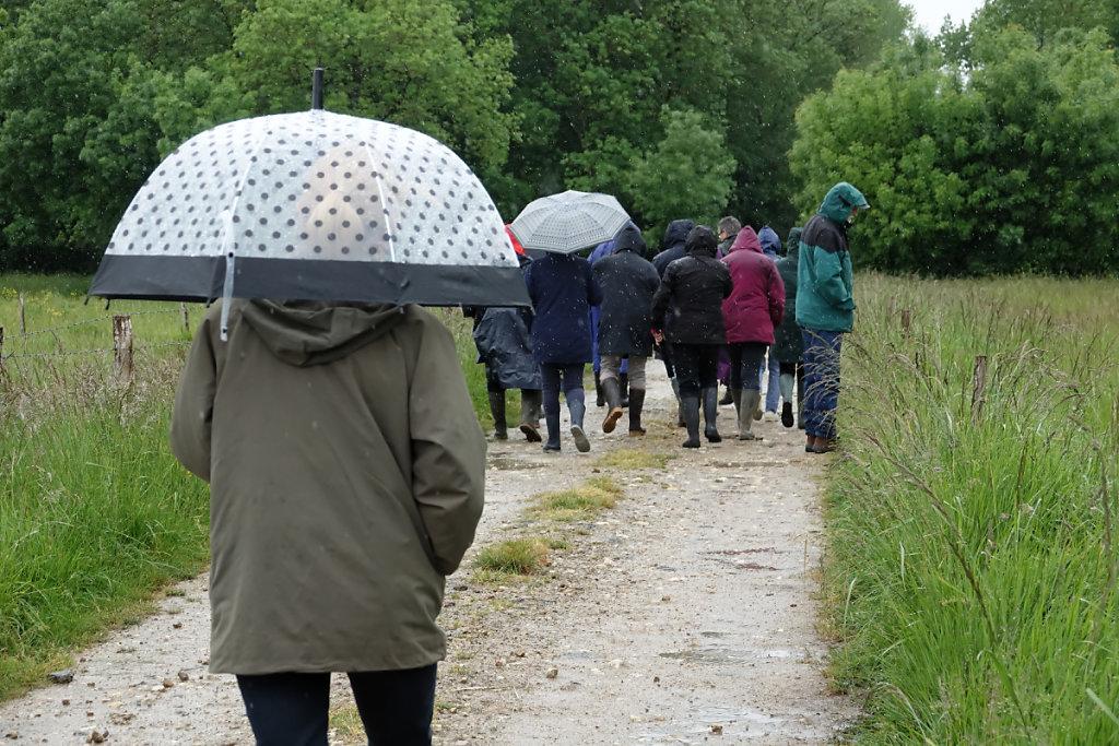No comment, il pleut ...