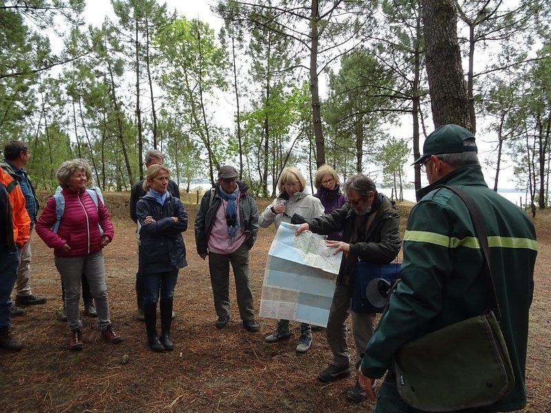Forêt Saint Trojan 18 mai 2019
