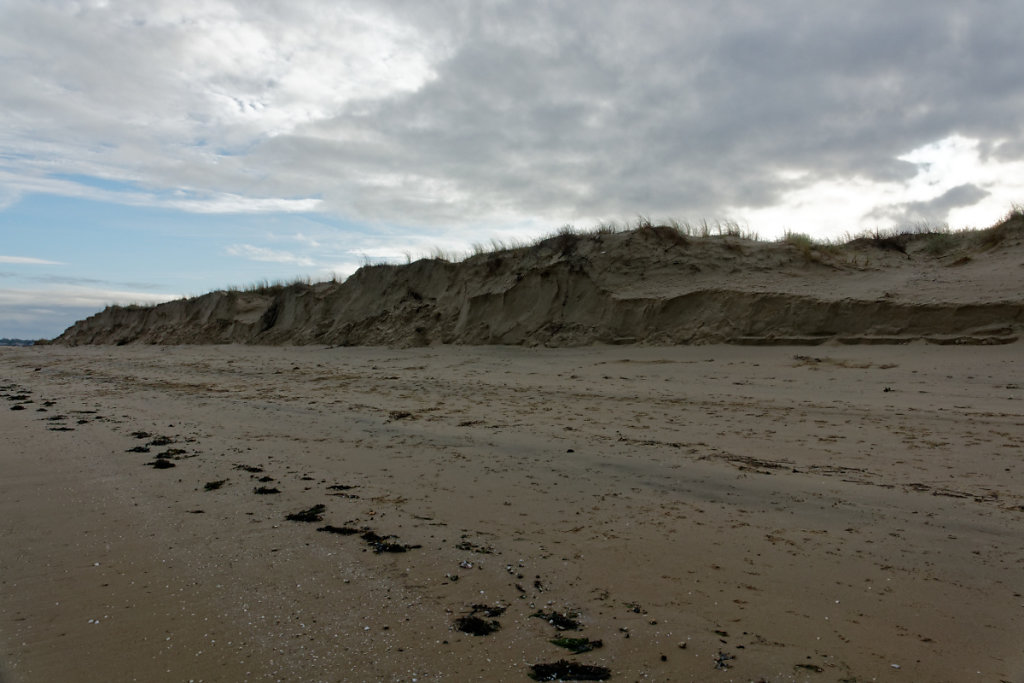 Erosion de la dune